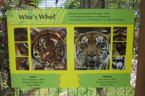 Honolulu Zoo (34)