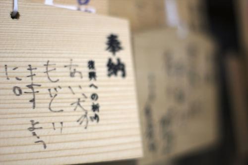 201705 札幌護国神社桜 (17)_R