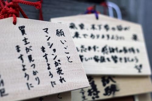201705 北海道神宮桜 (4)_R
