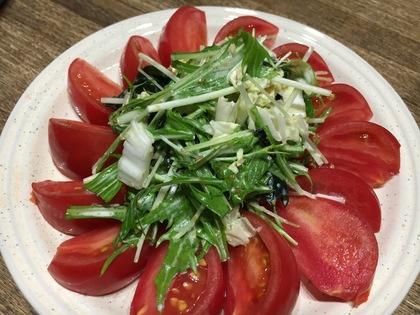 緑の野菜とトマトのサラダ
