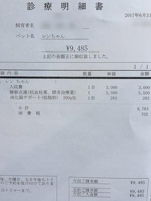 2017 6 3 明細