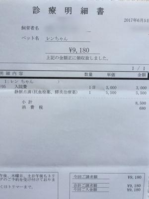 2017 6 5 明細