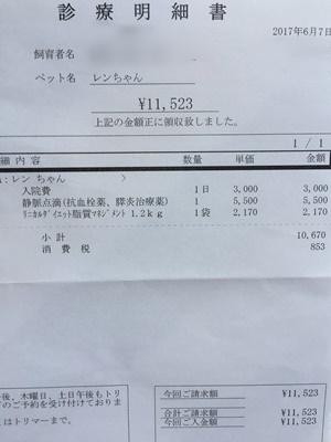 2017 6 7 明細