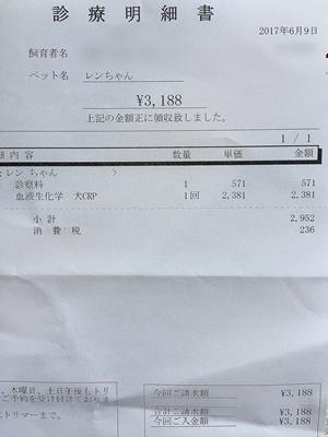 2017 6 9 明細