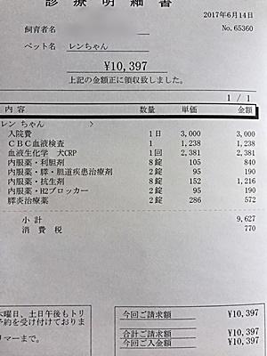2017 6 14 明細