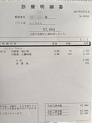2017 6 21 明細2