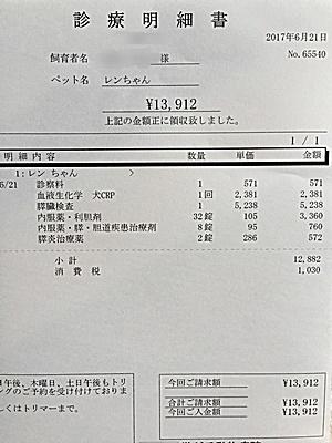 2017 6 21 明細1