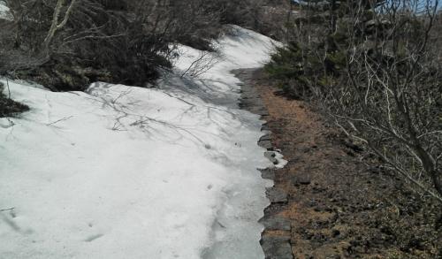 Snow1035.jpg