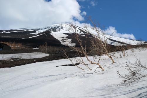 Snow_1339.jpg