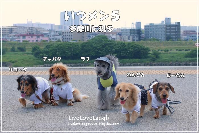 IMG_4518ふたこ1