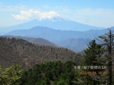 牛奥ノ雁ケ腹摺山より富士山