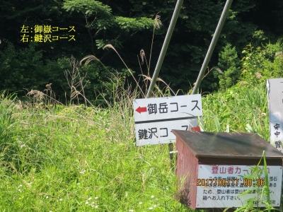左:御嶽コース 右:鍵沢コース