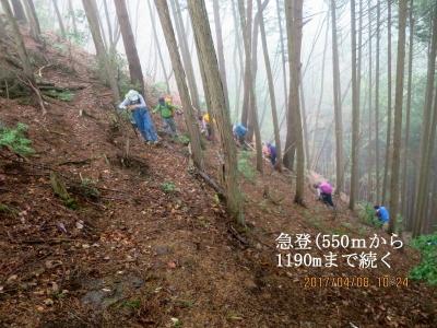 急登が続く(550m~1,190m迄)
