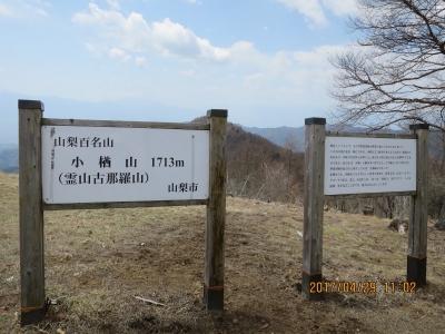 小楢山山頂