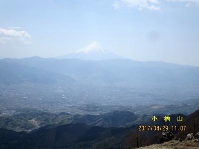 小楢山山頂より富士山