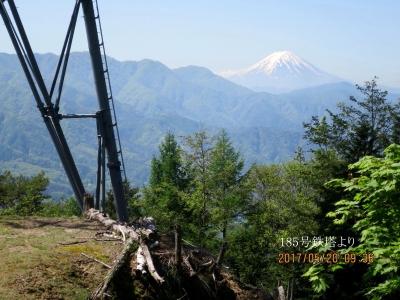 185鉄塔より富士山