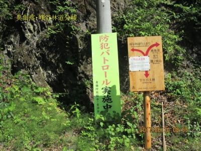 左:峰谷林道 左奥集落(奥入沢中腹道から下った集落、鷹ノ巣山登山口)