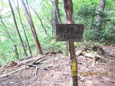 赤指(あかざす)山(1332メートル)