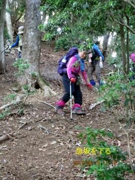 倒木の急斜面を終り細尾根の急斜面を下る
