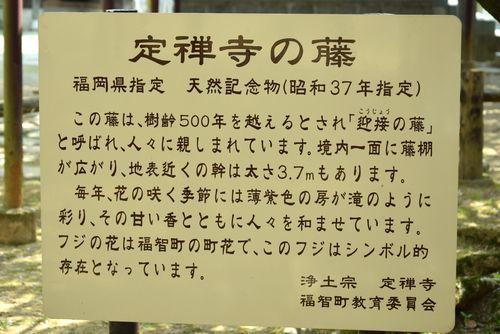 290401 定禅寺4