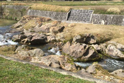 290328 千手川の甌穴群6