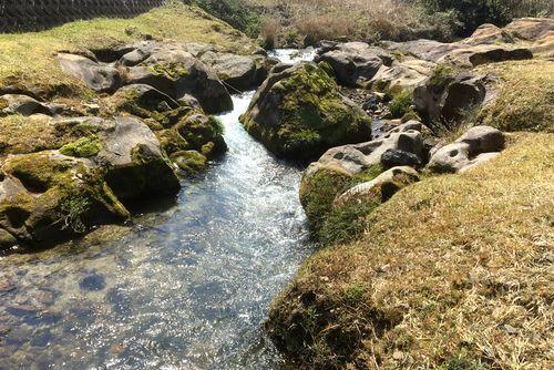 290328 千手川の甌穴群7