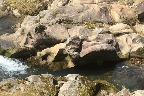 290328 千手川の甌穴群8