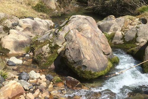 290328 千手川の甌穴群11