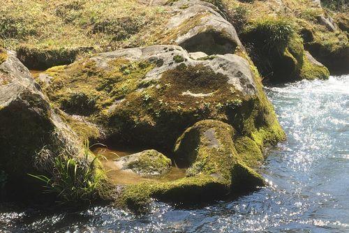 290328 千手川の甌穴群12