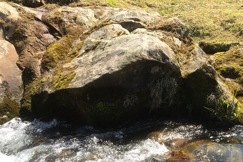 290328 千手川の甌穴群14