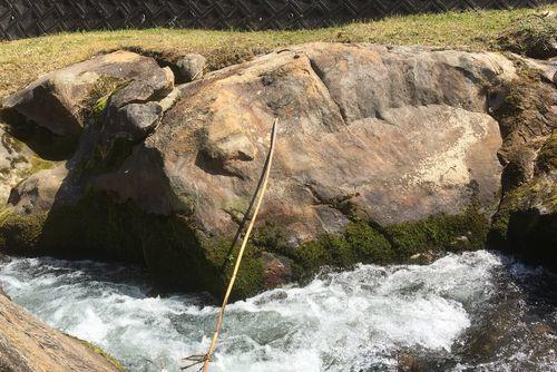 290328 千手川の甌穴群15