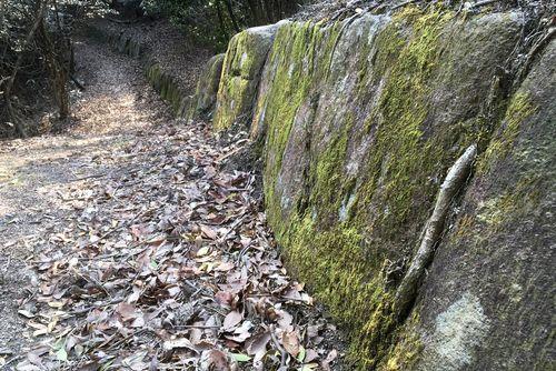290330 鹿毛馬神籠石11