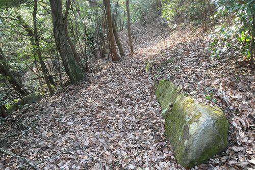 290330 鹿毛馬神籠石16