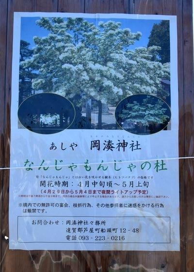 290504 岡湊神社2