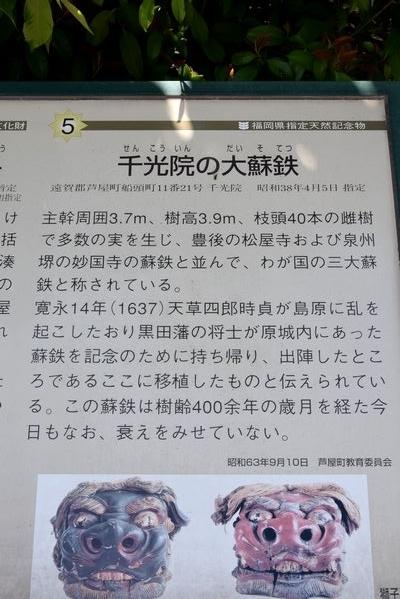 290504 岡湊神社14