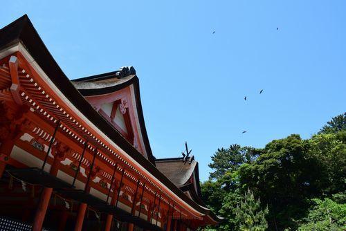 290520 日御碕神社15