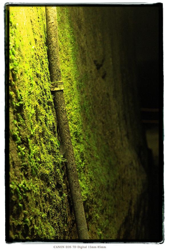 室岩洞201401muroiwa002.jpg