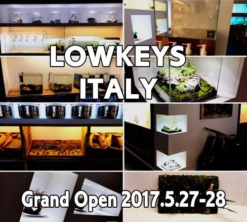 Italy_201705121000329c0.jpg
