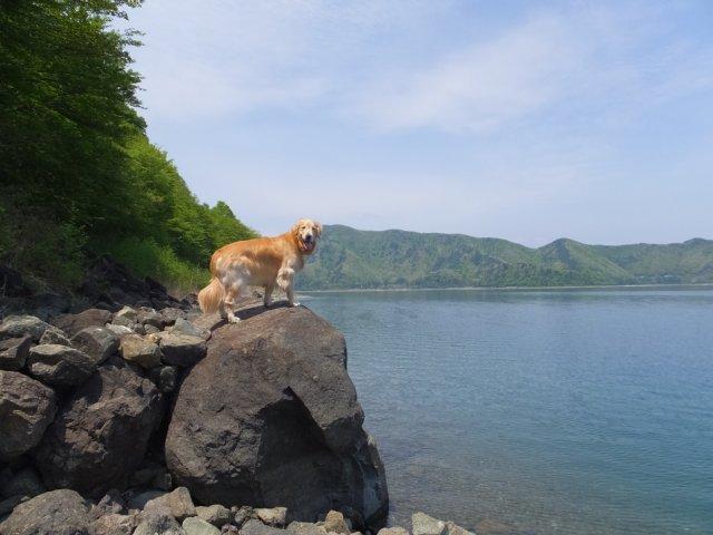 本栖湖 2017.5.12 001