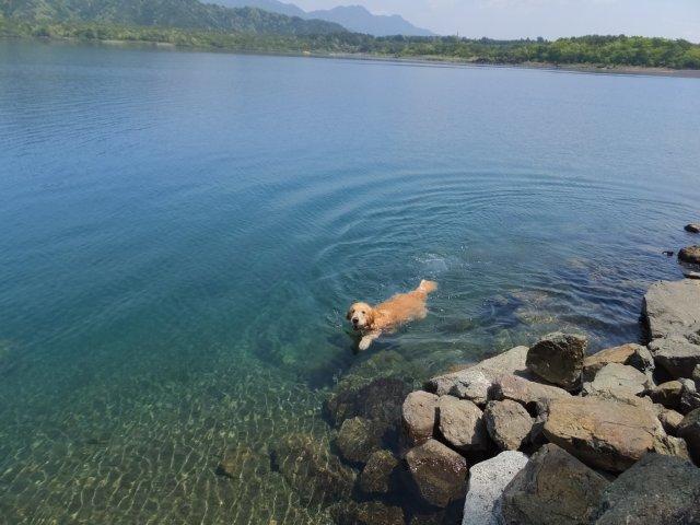 本栖湖 2017.5.12 005