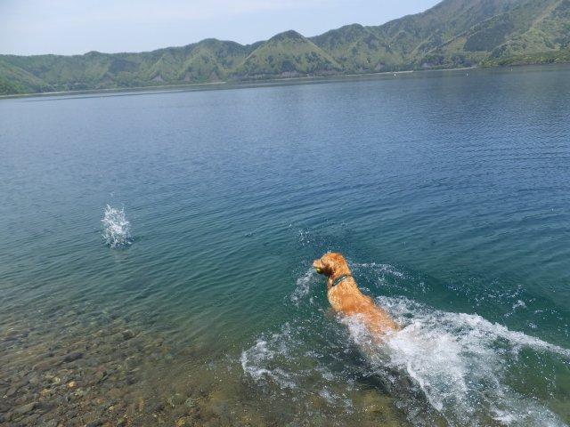 本栖湖 2017.5.12 009