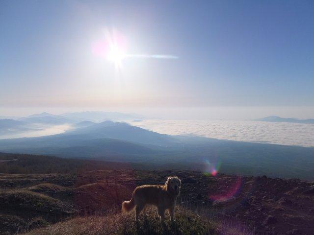 まぼろしの滝 2017.5.20 019