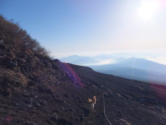 まぼろしの滝 2017.5.20 032