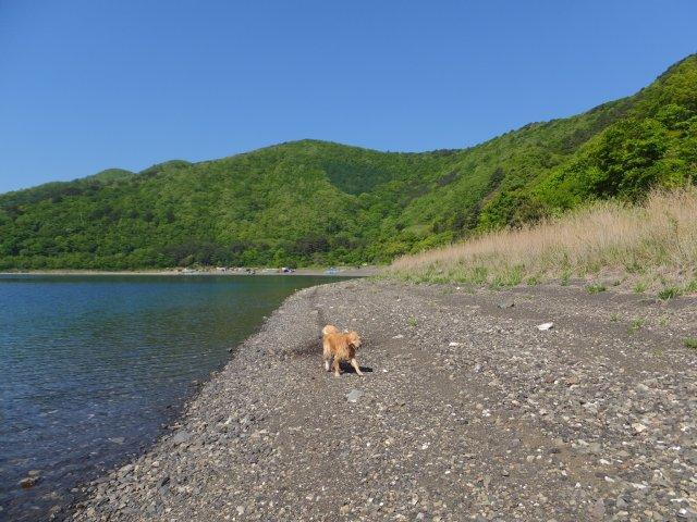 まぼろしの滝 2017.5.20 058