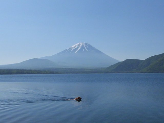 本栖湖 画像