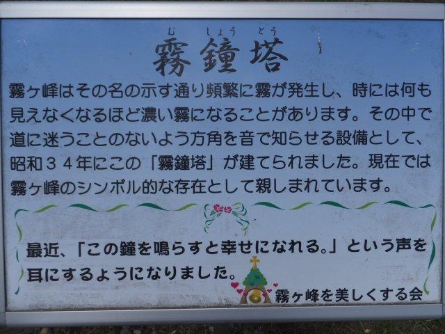 霧ヶ峰2017-6-24 006