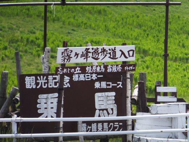霧ヶ峰2017-6-24 011