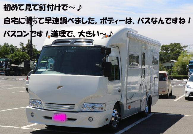 0A1A9154-98765456-876543.jpg