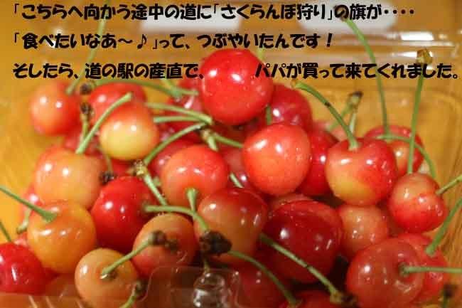 0A1A9662-098765456-98765.jpg