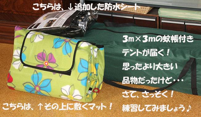 0A1A9883-34567.jpg